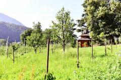 Sortengarten-mit-Bienenhaus